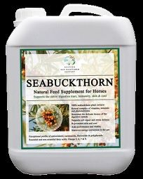 Sea Buckthorn for horses
